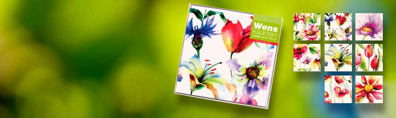 8 unieke wenskaarten met mooi kleurrijke aquarellen van bloemen. gedukt op bijzonder karton met parelmoerglans. Geleverd met enveloppen