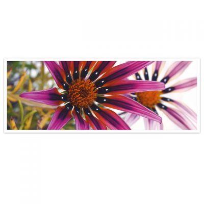 Horizon – wenskaarten-serie met bloemen - exotische bloem