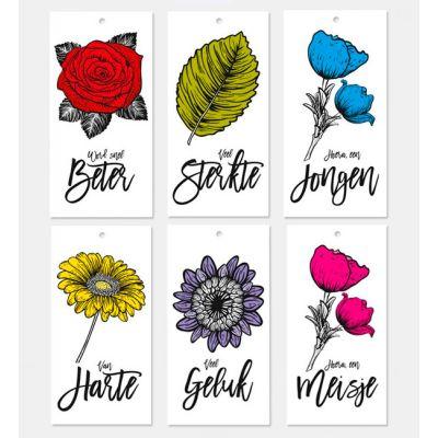 Set van 6 verschillende kadokaartjes met bloemen