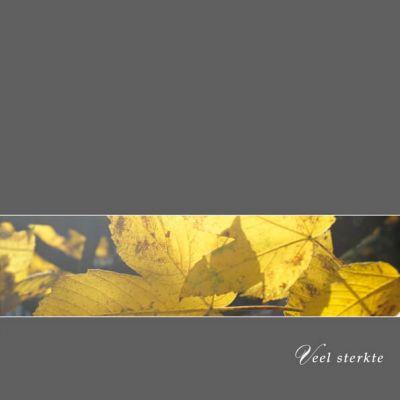Sterkte kaart, condoleance kaart met sfeervolle foto herfstbladeren