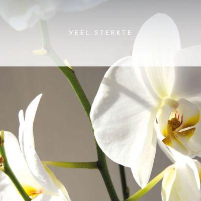 Condoleancekaart met envelop en foto van orchidee, veel sterkte