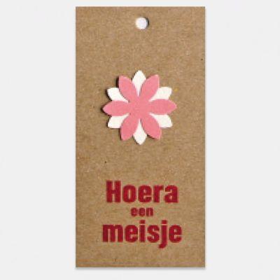 Kado- of bloemkaartje op kraft karton, Hoera een meisje, per stuk. Geboorte meisje