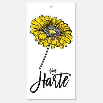kadokaartje of bloemkaartje Van Harte, Shadows, verpakt per 3 ex.