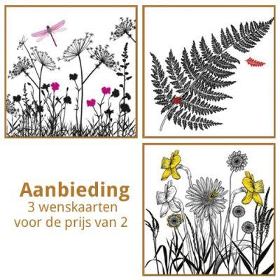 Aanbieding wenskaarten set bloemen